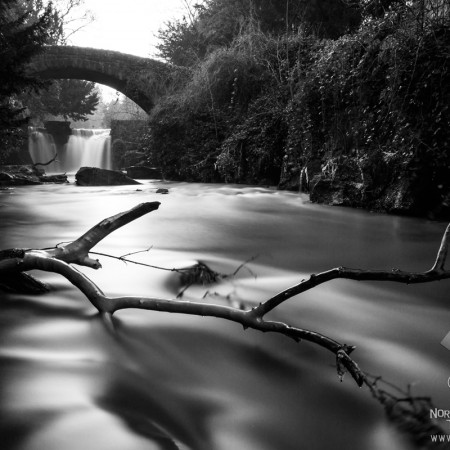 Jesmond Dene Waterfall Photo